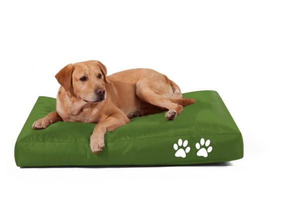 Fritz-Sitzsack Dog Bed grün